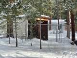 21 Sheep Creek Loop - Photo 11