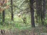 4526 Elk Loop Road - Photo 1