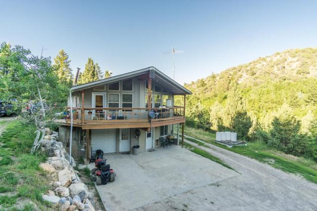12839 S Raccoon Street, Lava Hot Springs, ID 83246 (MLS #2115716) :: The Perfect Home