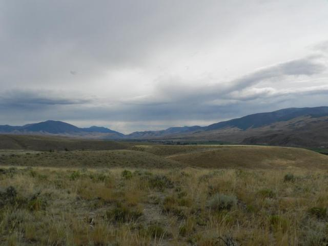 10 Antelope Drive, Carmen, ID 83462 (MLS #2116217) :: The Group Real Estate