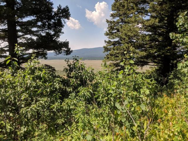 TBD E Valley Drive, Island Park, ID 83429 (MLS #2116589) :: The Group Real Estate