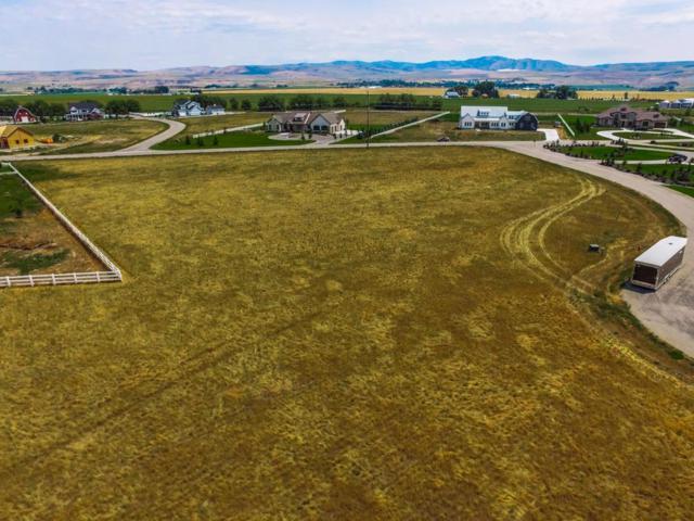 TBD Saddle Horn Drive, Idaho Falls, ID 83404 (MLS #2116595) :: The Perfect Home-Five Doors