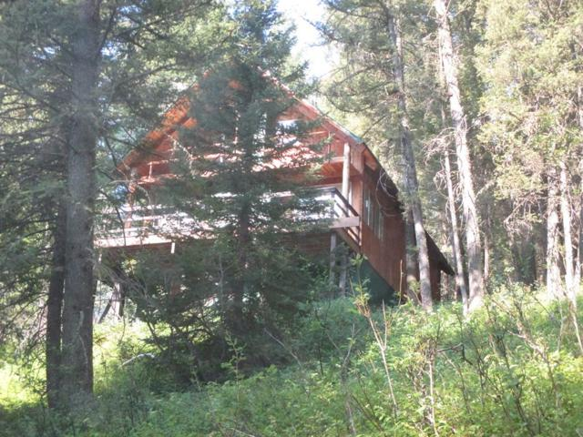 4117 Spruce Street, Island Park, ID 83429 (MLS #2116939) :: The Perfect Home
