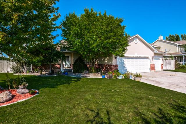390 La Costa Drive, Idaho Falls, ID 83401 (MLS #2117487) :: The Perfect Home Group