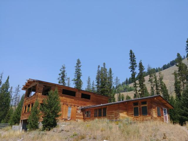 4611 Yankee Fork, Stanley, ID 83278 (MLS #2117550) :: The Perfect Home