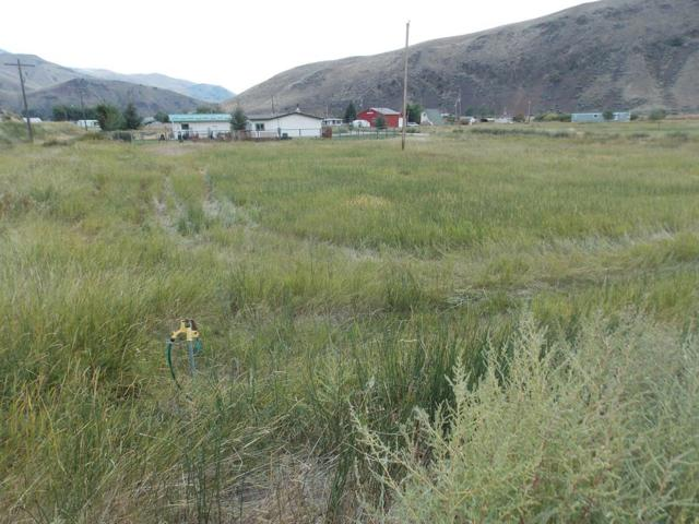 TBD Crystal Road, Salmon, ID 83467 (MLS #2117719) :: The Perfect Home-Five Doors