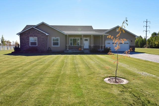 4002 E 235 N, Rigby, ID 83442 (MLS #2118250) :: The Perfect Home-Five Doors