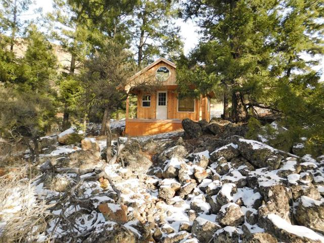 223 Crestview Drive, Salmon, ID 83467 (MLS #2118793) :: The Perfect Home