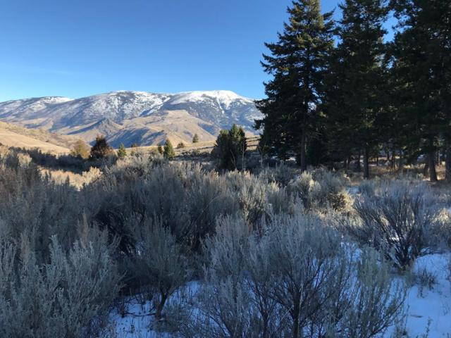 Lot10/11 Lakeview Drive, Salmon, ID 83467 (MLS #2118920) :: The Perfect Home