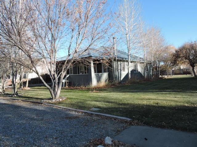 209 S Park Avenue, Mackay, ID 83251 (MLS #2119011) :: The Perfect Home Group