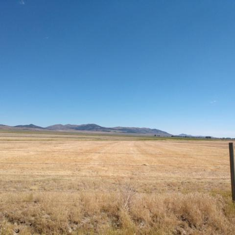 40 AC W 10500 S, STONE, ID 83252 (MLS #2119135) :: The Perfect Home-Five Doors