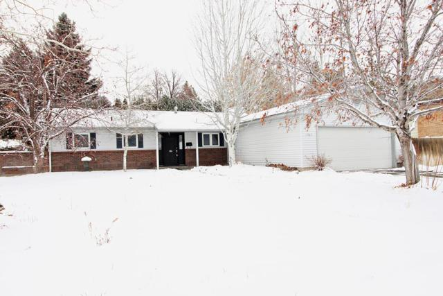1363 Terry Drive, Idaho Falls, ID 83404 (MLS #2119172) :: The Perfect Home-Five Doors