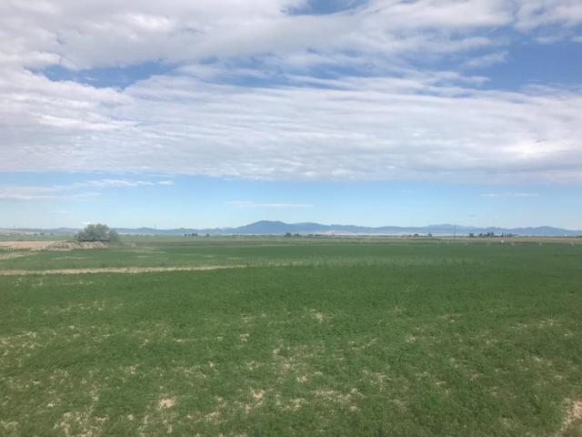 Lot 13 W Hwy 39, Pingree, ID 83262 (MLS #2119342) :: The Perfect Home Group