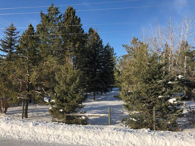 787 S River Road, St Anthony, ID 83445 (MLS #2119395) :: The Perfect Home Group