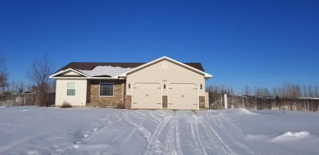 3945 E 172 N, Rigby, ID 83442 (MLS #2119457) :: The Perfect Home Group