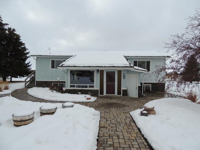 5907 N 5th E, Idaho Falls, ID 83404 (MLS #2119542) :: The Perfect Home Group