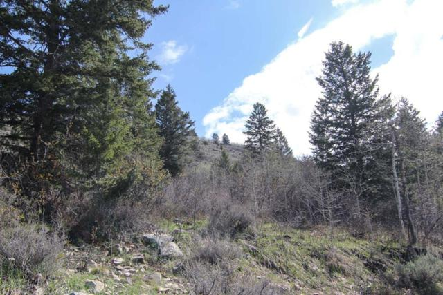 2040 Creekside Lane, Victor, ID 83455 (MLS #2119794) :: The Perfect Home