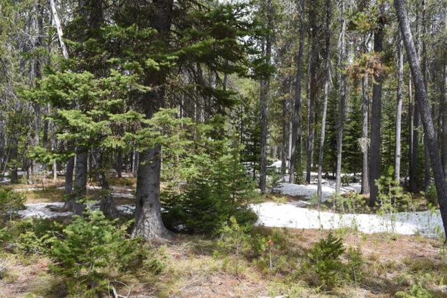 4027 N Salt Lick Loop Road, Island Park, ID 83429 (MLS #2120408) :: The Perfect Home