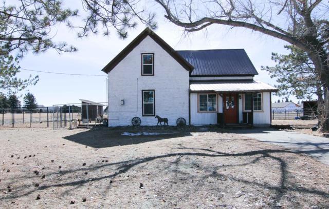 1063 W 110 S, Blackfoot, ID 83221 (MLS #2120513) :: The Perfect Home