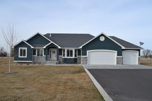 4005 E 54 N, Rigby, ID 83442 (MLS #2120577) :: The Perfect Home Group