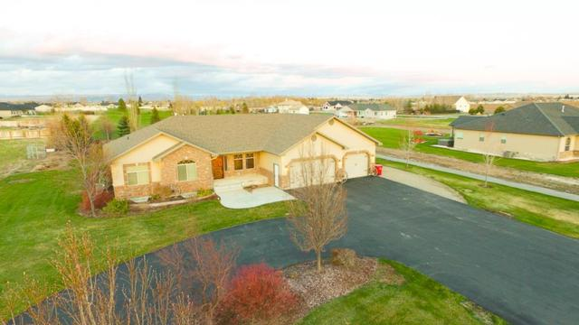 4055 E 164 N, Rigby, ID 83442 (MLS #2121134) :: The Perfect Home