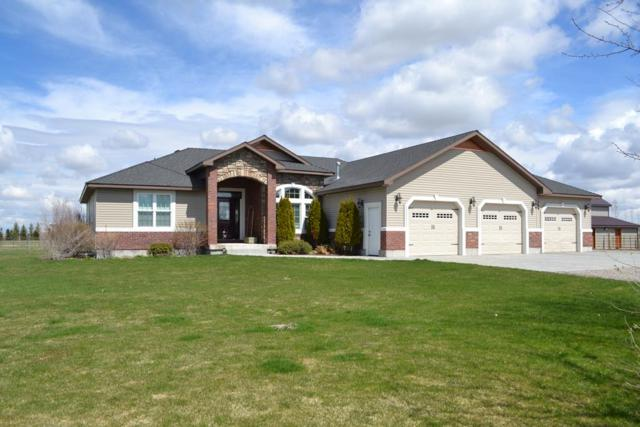 4183 E 176 N, Rigby, ID 83442 (MLS #2121229) :: The Perfect Home