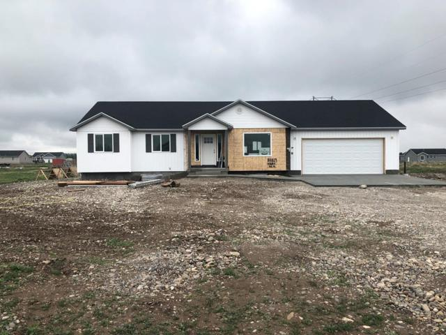 4028 E 66 N, Rigby, ID 83442 (MLS #2121962) :: The Perfect Home