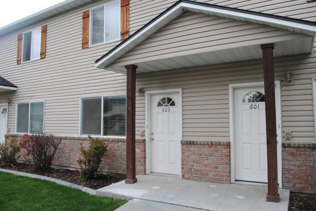 603 Countryside Avenue, Rexburg, ID 83440 (MLS #2122026) :: The Perfect Home