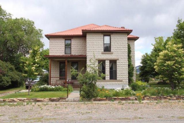 313 S Park Street, Mackay, ID 83251 (MLS #2122084) :: The Perfect Home