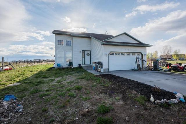 303 Dry Creek Road, Dubois, ID 83423 (MLS #2122085) :: The Perfect Home