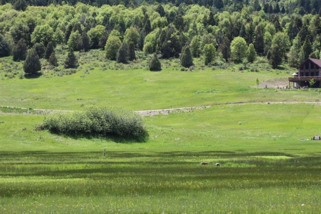 Lot 7R Pheasant Drive, Lava Hot Springs, ID 83246 (MLS #2122268) :: Team One Group Real Estate