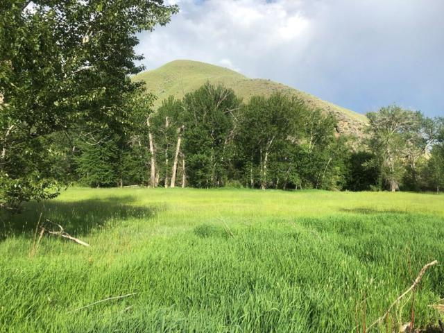 Lot 2E N Hwy 93 2E, North Fork, ID 83467 (MLS #2122388) :: The Perfect Home