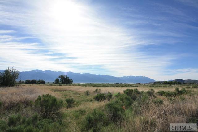 B1L13 Crows Nest Loop, Mackay, ID 83251 (MLS #2122924) :: The Group Real Estate