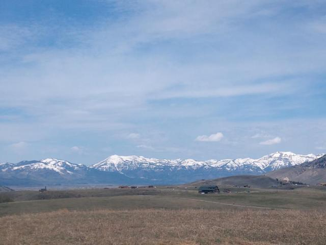 3110 E Wild Horse Drive, Jackson, WY 83001 (MLS #2123414) :: The Perfect Home