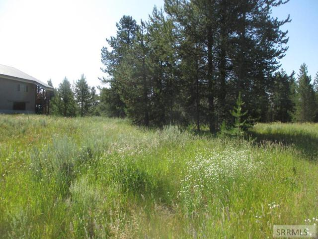 TBD Swan Avenue, Island Park, ID 83429 (MLS #2123662) :: The Group Real Estate