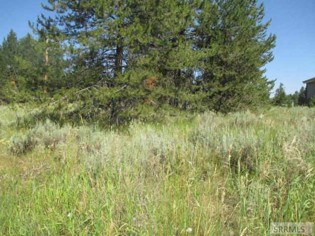 TBD E Pinehaven Drive, Island Park, ID 83429 (MLS #2123666) :: The Group Real Estate