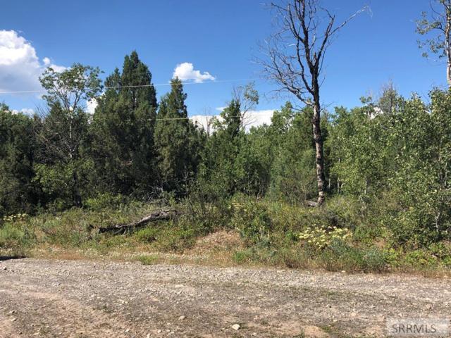 1861 Cedar Ridge Road, Ashton, ID 83420 (MLS #2123680) :: Silvercreek Realty Group