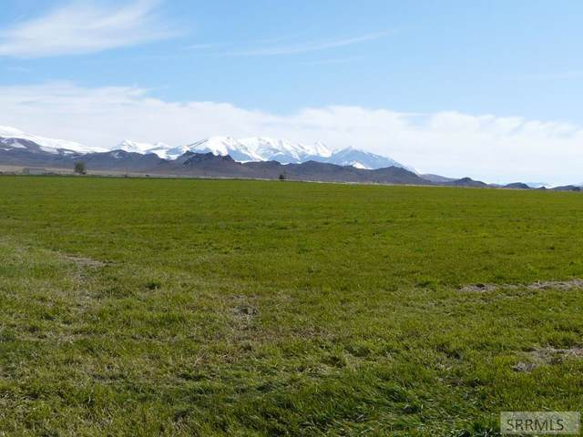 TBD Hot Springs Road, Challis, ID 83226 (MLS #2125396) :: The Perfect Home