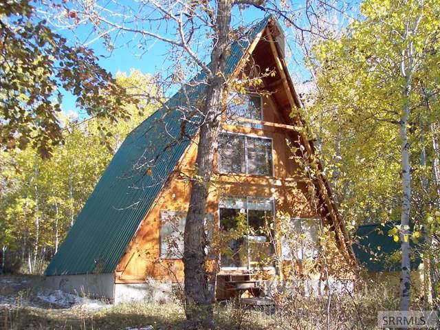 175 Mckim Creek Road, Salmon, ID 83467 (MLS #2125521) :: Silvercreek Realty Group