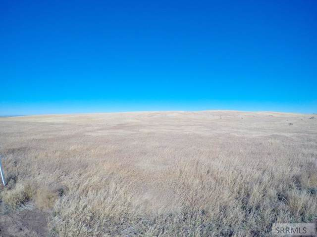 3279 E 650 N, Chester, ID 83421 (MLS #2125823) :: The Perfect Home