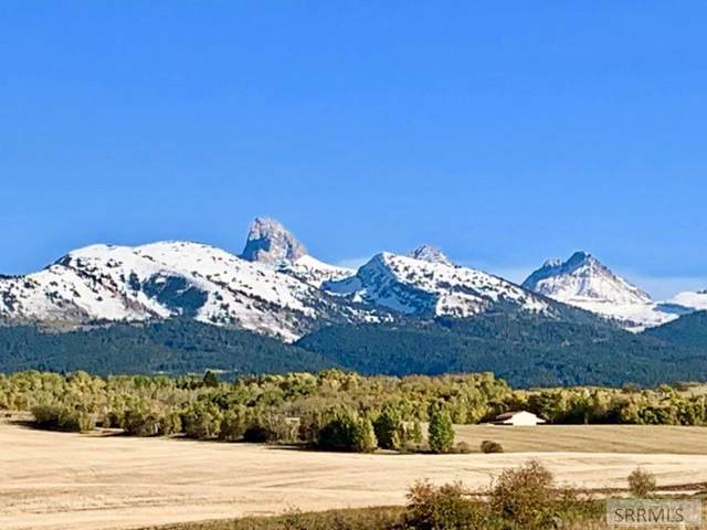 TBD Grouse Creek Road, Driggs, ID 83422 (MLS #2125871) :: The Group Real Estate