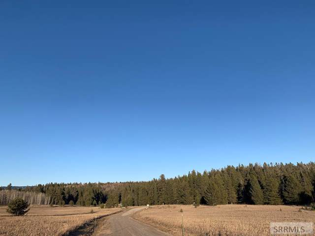 4454 Chickadee Lane, Ashton, ID 83420 (MLS #2125959) :: Silvercreek Realty Group