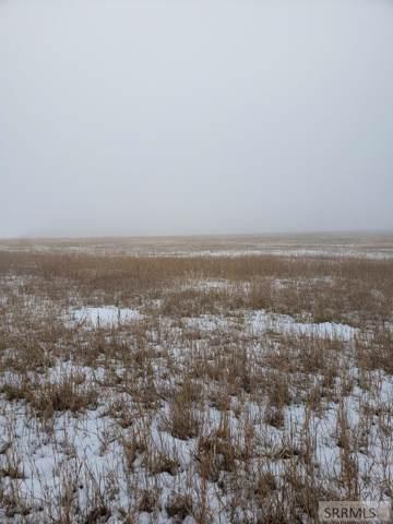 TBD Meadow Lane, Salmon, ID 83467 (MLS #2126486) :: The Perfect Home