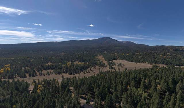 4911 Alpenglow Road, Island Park, ID 83429 (MLS #2128442) :: The Group Real Estate