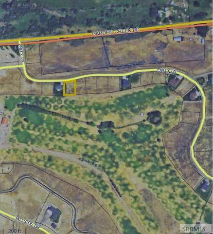 TBD Emily Lane, Challis, ID 83226 (MLS #2129101) :: Team One Group Real Estate