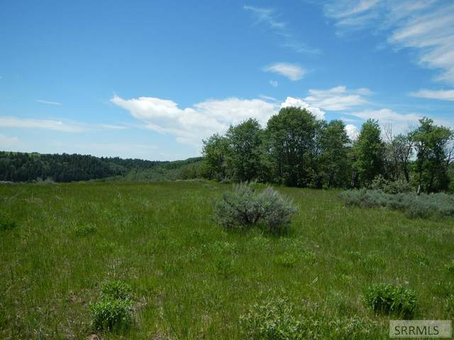 1579 Sharptail Road, Ashton, ID 83420 (MLS #2129780) :: The Perfect Home