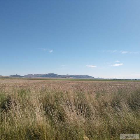 21500 W 10500 S, STONE, ID 83252 (MLS #2130871) :: Team One Group Real Estate