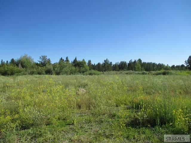3300 Hwy 20, Island Park, ID 83429 (MLS #2130913) :: The Perfect Home