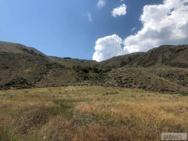000 Old Stage Road, Salmon, ID 83467 (MLS #2131176) :: The Perfect Home