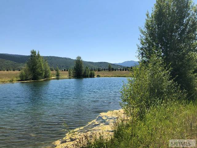 177 Cattail Drive, Victor, ID 83455 (MLS #2131268) :: The Perfect Home